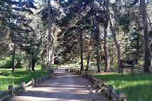 Reserva Nacional Federico Albert, Chanco, Chile