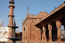 Moti Masjid, Bhopal, India