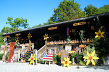 Aunt Debbie's Country Store, Pigeon Forge, United States