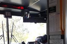 Blue Mountains Explorer Bus, Katoomba, Australia