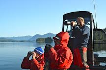 Adventure Tofino - Wildlife Tours, Tofino, Canada