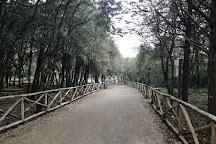 Riserva Bosco Pianelle, Martina Franca, Italy