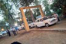 Parijaat Tree, Lucknow, India