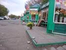 Цветы, проспект Гагарина на фото Оренбурга