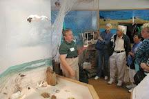 Ostego Bay Marine Science Center, Fort Myers Beach, United States