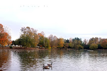 Webster Pond, Syracuse, United States