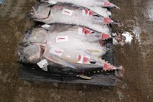 Honolulu Fish Auction, Honolulu, United States