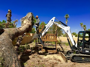 Arizona Home Check & Tree Service