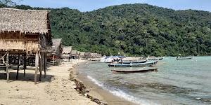 Seastar Andaman