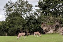 Ponderosa Adventure Park, Liberia, Costa Rica