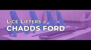 Lice Lifters Chadds Ford, PA - Head Lice Treatment & Removal Services