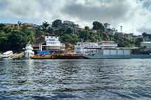 Ponte Do Rio Negro, Manaus, Brazil