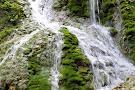 Evergreen Cascades Waterfall