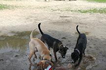 Starr Farm Dog Park, Burlington, United States