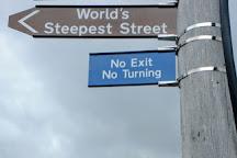 The World's Steepest Street, Dunedin, New Zealand