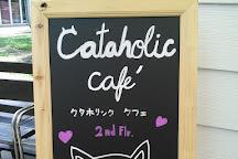 Cataholic Cafe', Bangkok, Thailand