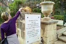 Kitchen Garden of San Anton Palace, Island of Malta, Malta