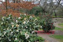 Jensen Botanical Garden, Carmichael, United States