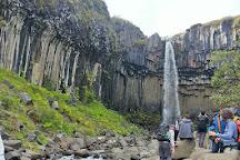 Svartifoss Waterfall, Skaftafell, Iceland