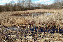 Great Swamp National Wildlife Refuge, New Jersey, United States