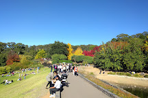 Mount Lofty Botanic Garden, Greater Adelaide, Australia