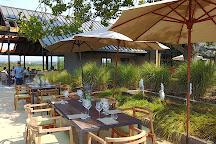 MacRostie Winery and Vineyards, Healdsburg, United States