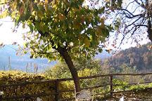 Cascina Pistone, Borgomale, Italy