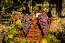 Asconi Winery, Puhoi, Moldova