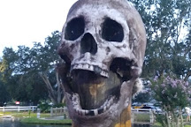 Pirate's Cove Adventure Golf, Kissimmee, United States
