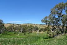 Onkaparinga River National Park, Port Noarlunga, Australia