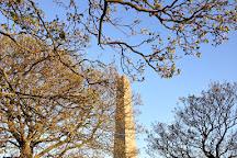 Duke of Wellington Monument, Dublin, Ireland