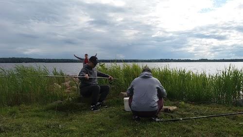 Camping Niedras