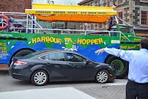 Harbour Hopper Tours, Halifax, Canada