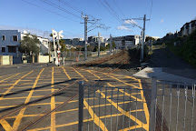 Newmarket, Auckland Region, New Zealand