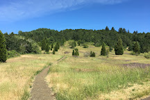 Bald Hill Natural Area, Corvallis, United States