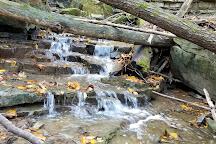 Short Hills Provincial Park, Thorold, Canada