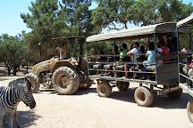 Badoca Safari Park, Santiago do Cacem, Portugal
