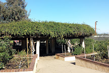 Inez Grant Parker Memorial Rose Garden, San Diego, United States