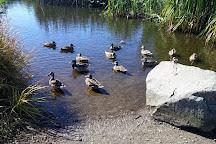 Yauger Park, Olympia, United States