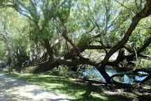 Lake Wendouree, Ballarat, Australia