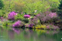 Ueno Park, Shobara, Japan
