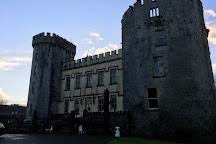 Farney Castle, Tipperary, Ireland