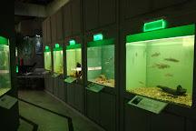 Kastoria Aquarium, Kastoria, Greece
