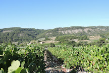 Vignolis, Cooperative du Nyonsais, Nyons, France