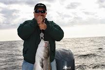 Reel Reaction Sportfishing, Barnegat Light, United States