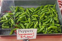 Morgantown Farmers Market, Morgantown, United States