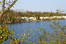 Buckland Lake Reserve, Cliffe, United Kingdom