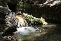 Valley of the Butterflies, Petaloudes, Greece