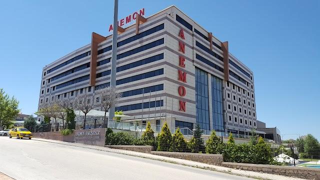 Anemon Eskişehir