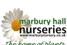 Marbury Hall Nurseries, Northwich, United Kingdom